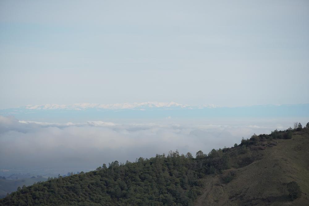 Mt Diablo_Spring2020_10